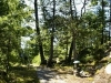 MLS® 20090235 Sans Souci Cottage Sold By Rick Hill: Forest Path With Granite Cliff