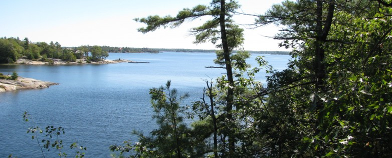 Georgian Bay Waterfront Lot